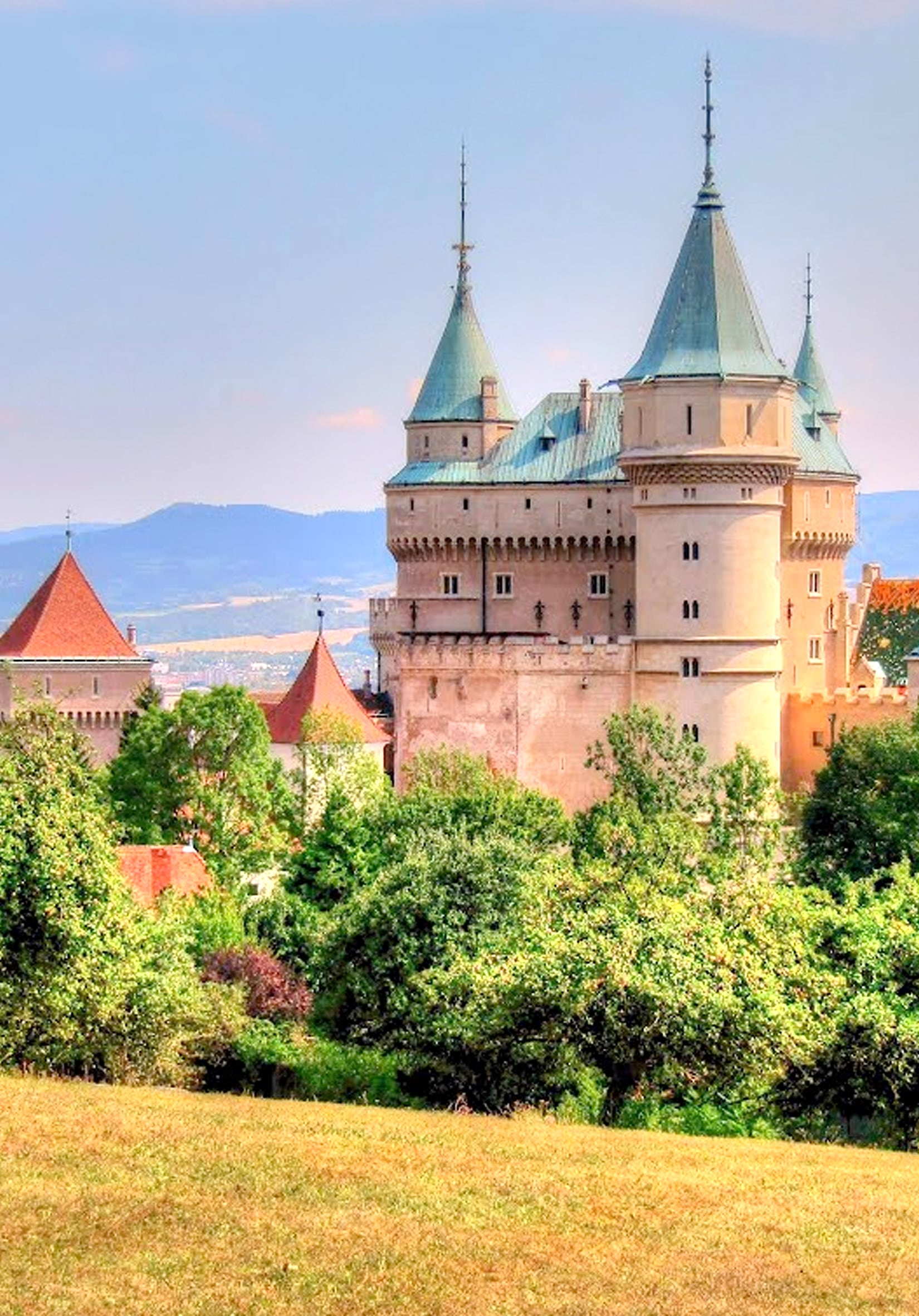 wedding-at-bonjice-castle-catering